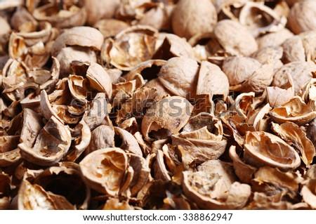 Lots of walnut shell closeup - stock photo