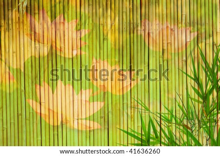 lotus and bamboo background great for any project - stock photo