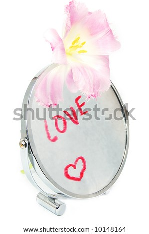 Love concept, words of love written on mirror with flower - stock photo