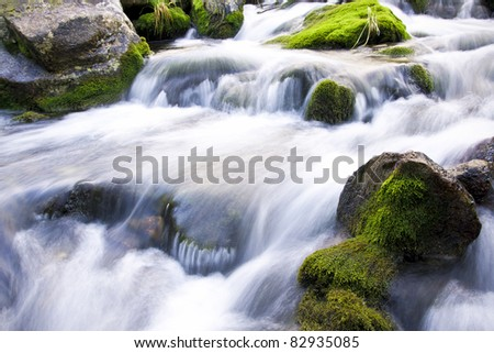 lovely and magical water stream - stock photo