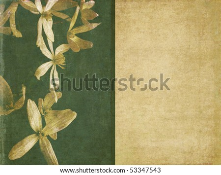 lovely background image with floral elements - stock photo