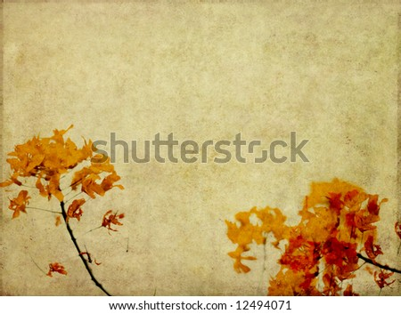 lovely background image with interesting texture, red floral elements and plenty of space for text - stock photo