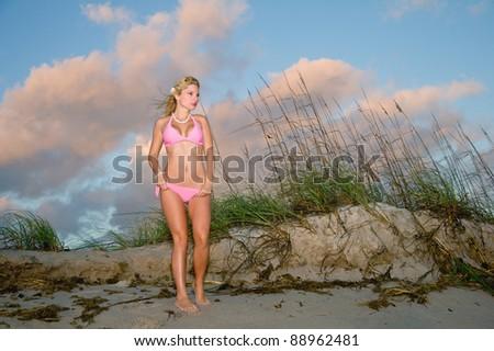 lovely blond bikini model against beach sand dunes at florida sunrise - stock photo
