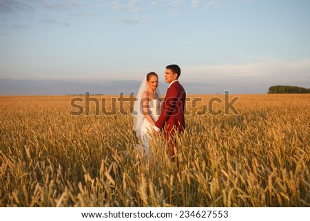 Lovely bride and groom - stock photo