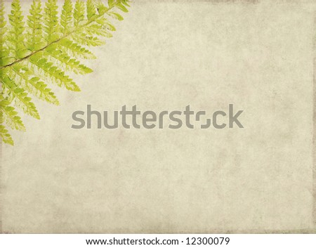 lovely brown background image with interesting earthy texture, close-up of leaves and plenty of space for text - stock photo