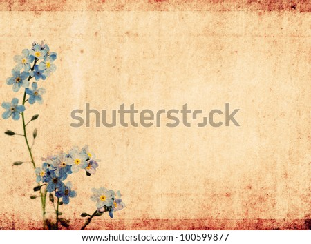 lovely floral background and design element - stock photo