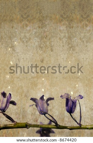lovely green and purple background image with interesting texture and floral elements and plenty of space for text - stock photo
