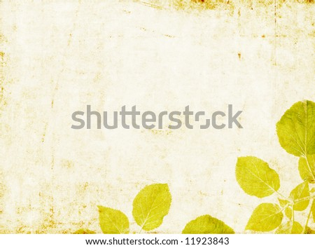 lovely light background image with interesting texture, close-up of leaves and plenty of space for text - stock photo