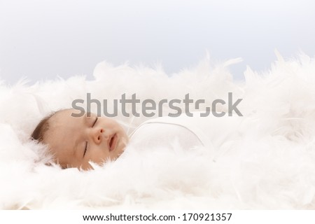 Lovely newborn baby sleeping in feather nest. - stock photo