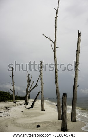 Lover Key in the Gulf Coast of Florida. - stock photo