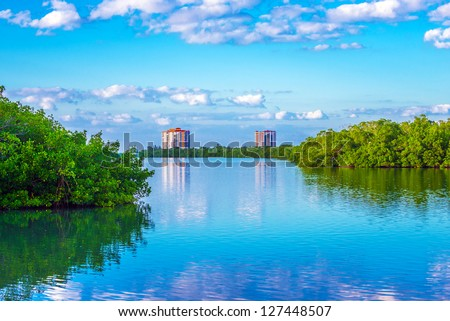 Lovers Key State Park in Southwest Florida, a haven for wildlife and home to West Indian manatees, bottle nose dolphins, roseate spoonbills, marsh rabbits, and bald eagles. - stock photo