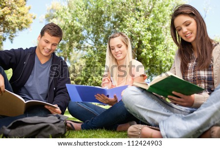 Low angle-shot of young people studying in a park - stock photo