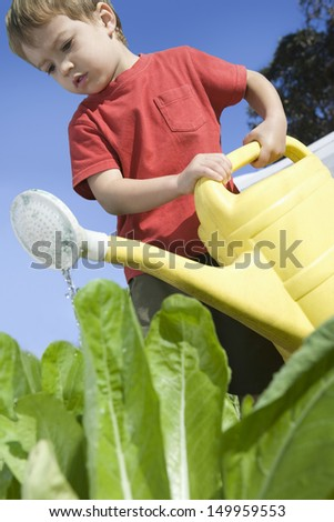 Low angle view of a little boy in vegetable garden with watering can - stock photo