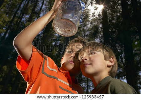 Low angle view of two young boys closely examining a glass jar with insects which they have cought in the forest behind them - stock photo