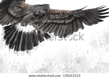 low-flying eagle illustration over artistic background, made with digital tablet - stock photo