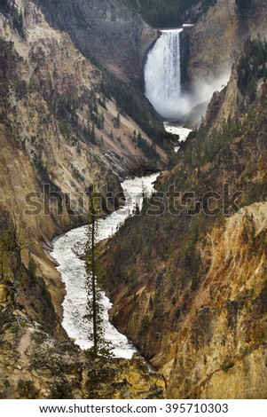 Lower falls of the Yellowstone River with pines on the shore and steep yellow cliffs, Wyoming.. - stock photo