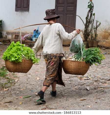 LUANG PRABANG, LAOS -  FEBRUARY 7:  a woman is carrying a yoke with green vegetables on her shoulder to go to the market,  on February 7, 2014, in Luang Prabang, Laos   - stock photo