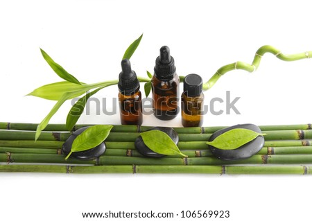 Lucky Bamboo and massage oil with stones on bamboo grove - stock photo