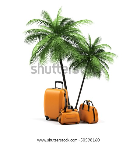 Luggage and palms on a white background. - stock photo