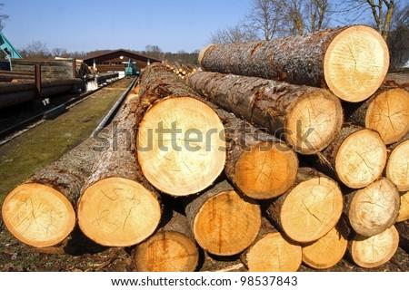 Lumber mill - stock photo