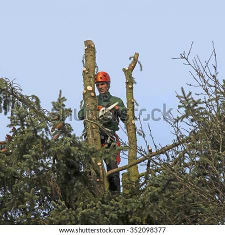 lumberjack in the top of a tree, felling the fir tree with a chain saw - stock photo