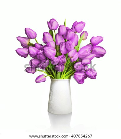 Lush bunch of cheerful elegant vivid light blue indigo color tulips in white flowerpot isolated with clipping path. View close-up with copy space for text. Congratulation card for women mother's day - stock photo