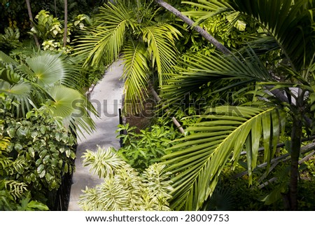 Lush gardens at the Hemingway House in Key West, florida - stock photo