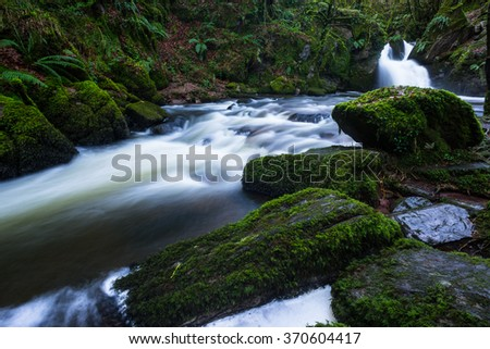 lush green forest waterfall  - stock photo