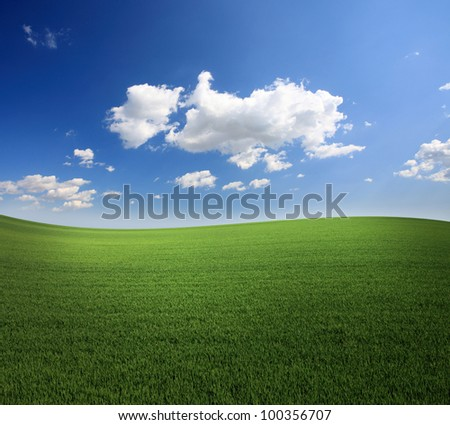 Lush green grass and a cool blue sky - stock photo