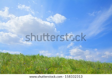 Lush, green landscape with blue sky and clouds. - stock photo