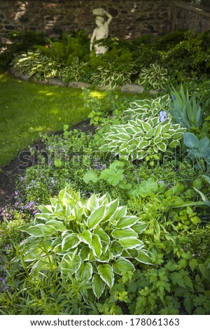 Lush green summer garden with perennial plants and flowers - stock photo