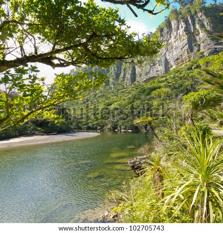 Lush green vegetation in sub-tropical rainforest along Pororai River, West Coast, South Island, New Zealand - stock photo