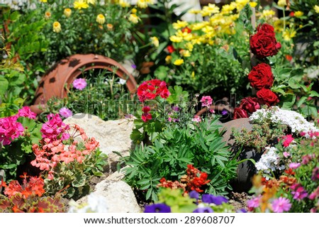 Lush landscape garden with flower bed and colorful plants - stock photo