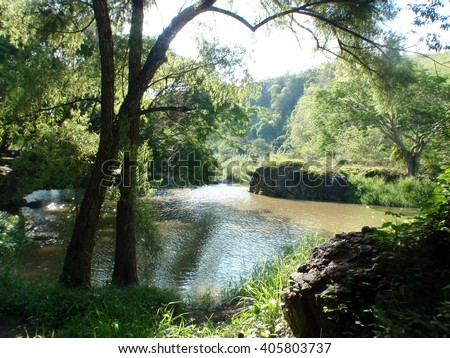 Lush trees overhanging quiet river - stock photo