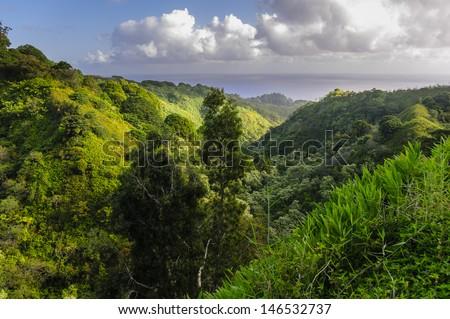 Lush tropical rain-forest valley on The Road to Hana, Maui, Hawaii, USA - stock photo