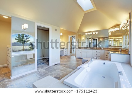 Luxuriant  bathroom with whirlpool and amazing window view - stock photo