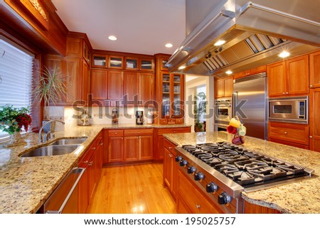 Luxuriant kitchen interior. View of storage combination, kitchen island and appliances - stock photo
