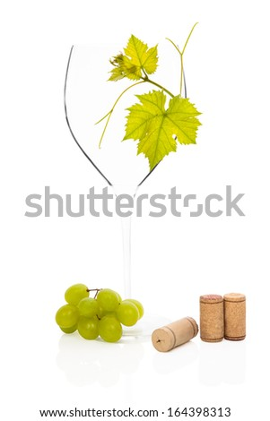 Luxurious empty wineglass with vine leaves, green grapes and wine corks isolated on white background. Luxurious culinary wine drinking still life. - stock photo