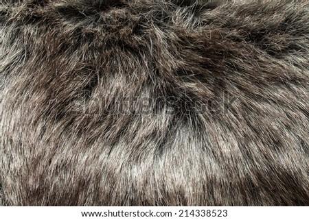 Luxurious wool texture. - stock photo