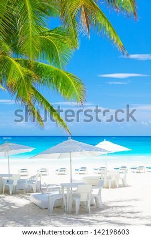Luxury beach cafe on beautiful clean seashore, blue cloudy sky, peaceful sea, fresh green palm tree leaves, exotic nature, tropical resort  - stock photo