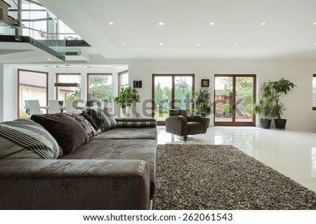 Luxury big family room with view overlooking the garden - stock photo