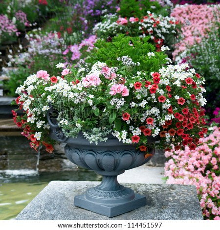 luxury flower bed in a vase - stock photo