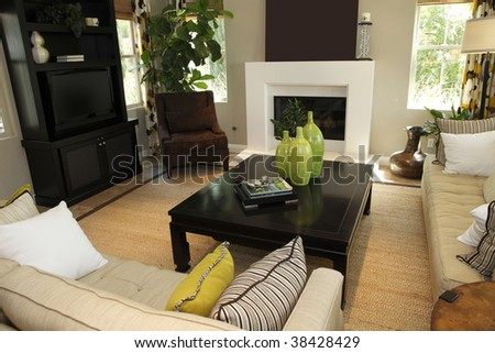 Luxury home living room with contemporary decor. - stock photo