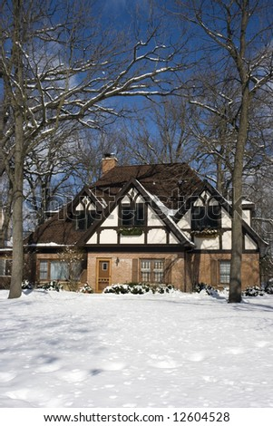 Luxury House - German style, Chicago suburbs. - stock photo