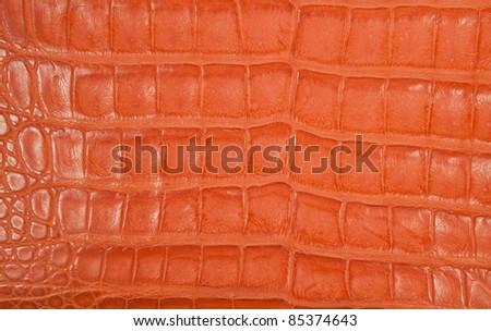 luxury orange crocodile texture - stock photo
