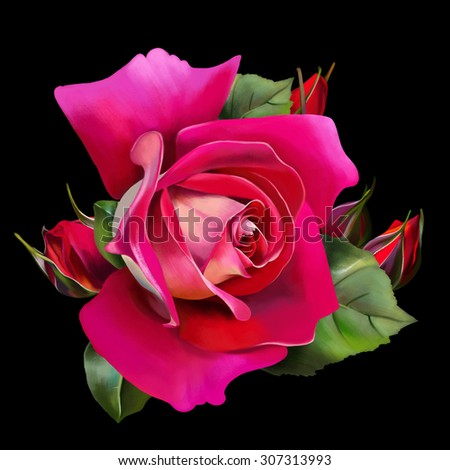 luxury red rose, with buds, close up, on black background Wallpaper, watercolor illustration - stock photo