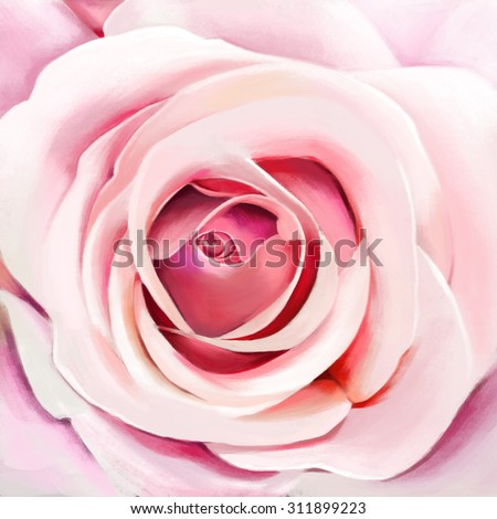 luxury sweet pink rose, closeup,watercolor illustration - stock photo