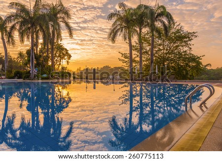Luxury swimming pool with plam tree at during sunrise. - stock photo