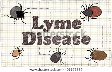 lymes disease essay Health experts warn of hidden spread of lyme disease  of an infected tick),  which tests had determined was my disease – both were teary.