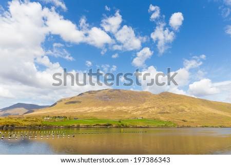 Maamturks and Killary Harbour in Connacht - stock photo